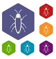 Cockroach icons set vector image vector image
