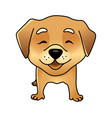 cute happy dog vector image