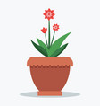 mandevilla flower and leaves vector image vector image