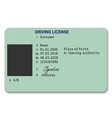 plastic driver licence vector image vector image