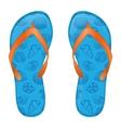 blue flip flops vector image vector image