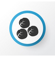 brussels sprouts icon symbol premium quality vector image