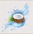 coconut with green leaves and blue water splash vector image vector image