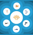 flat icon nature set of cachalot fish conch and vector image vector image