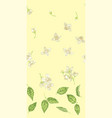 seamless pattern with jasmine plant parts like vector image vector image