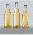 set of full beer bottles on transparent background vector image vector image