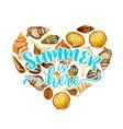 summer beach seashell heart greeting card design vector image