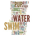 teach your pup to swim for fun and exercise text vector image vector image