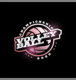 volleyball logo modern professional typography vector image vector image