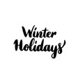 winter holidays lettering vector image