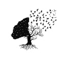 birds flying from the tree vector image