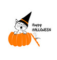 cute black cat in the orange pumpkin vector image vector image