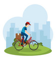 delivery worker in bicycle vector image vector image