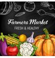 farm vegetables chalk sketches on chalkboard vector image vector image