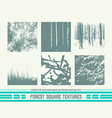 Forest square textures vector image vector image