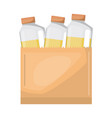 paper bag with drinks orange juice bottles vector image