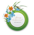 round template narcissus and foget-me-not vector image vector image