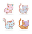 set cute cat animal with whiskers vector image vector image