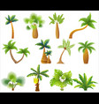 tropic palm trees isolated exotic palm tree set vector image
