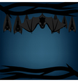 Bats hanging on branch vector image