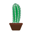 cactus icon design template isolated vector image