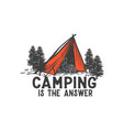 camping is answer vector image