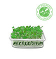 microgreen sprouts for healthy food vector image vector image