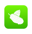 mulberry icon green vector image vector image