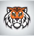 tiger head logo template mascot design vector image vector image