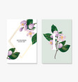 watercolor realistic flower branch greenery leaves vector image vector image