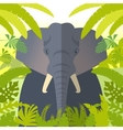 Elephant on the Jungle Background vector image