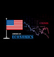 american economy with usa flag vector image