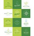beauty healthcare spa badge logo set nature skin vector image vector image