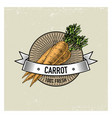 carrot vintage set of labels emblems or logo for vector image vector image