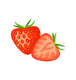 cartoon strawberry isolated on white background vector image vector image