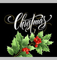 christmas lettering with realistic mistletoe vector image