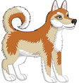 dog husky red vector image vector image