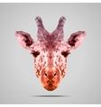 Giraffe low poly Voodoo Raw Sienna vector image vector image