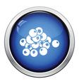 Icon of Blueberry