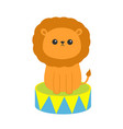lion icon sitting on drum cute cartoon funny vector image
