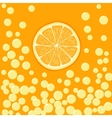 orange slice in bubbly drink vector image