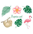 set tropical animals and plants vector image vector image