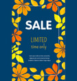 autumn limited sale concept background flat style vector image vector image