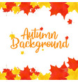 autumn top view composition vector image