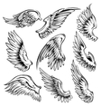 Bird Wings Black White Set vector image vector image