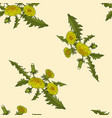 dandelions floral seamless pattern vector image vector image