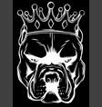 dog head with crown in black background vector image