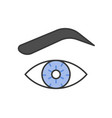 eye eye brown and contact lens vector image vector image