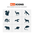 fauna icons set with beaver turtle impala and vector image