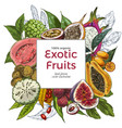 full color realistic drawn exotic fruits vector image vector image